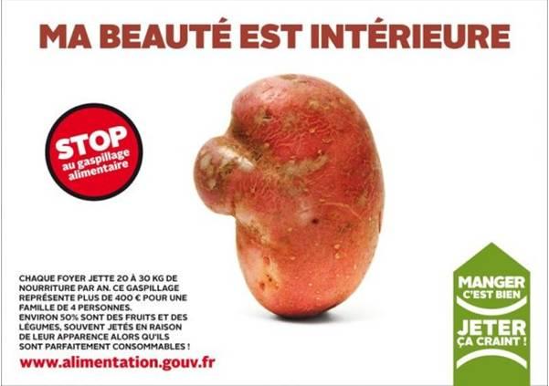 Gaspillage patate