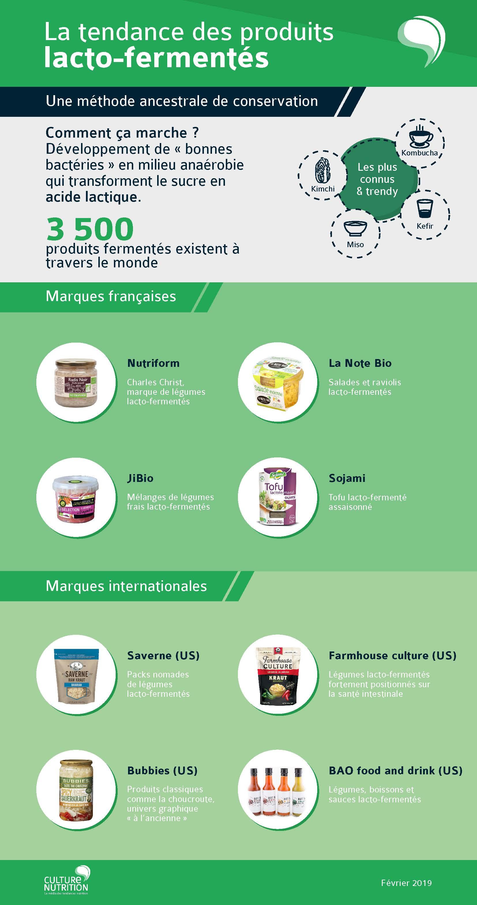 infographie lacto-fermentation