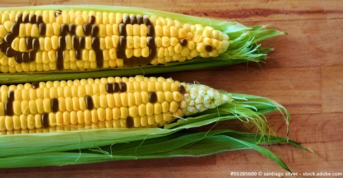 claims sans OGM