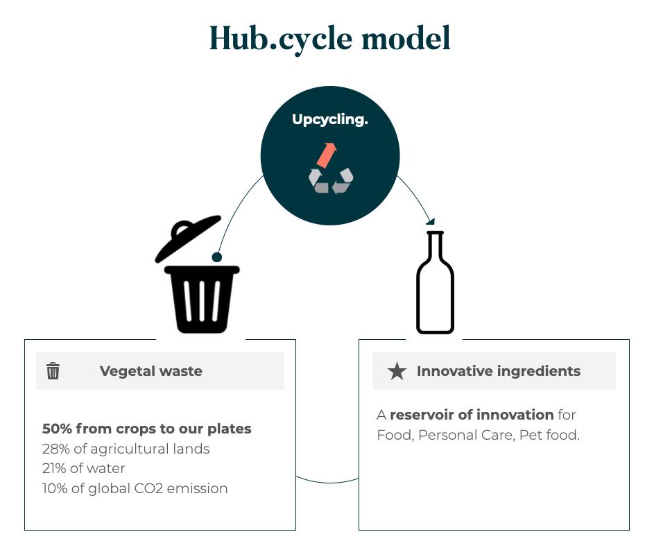 hub.cycle