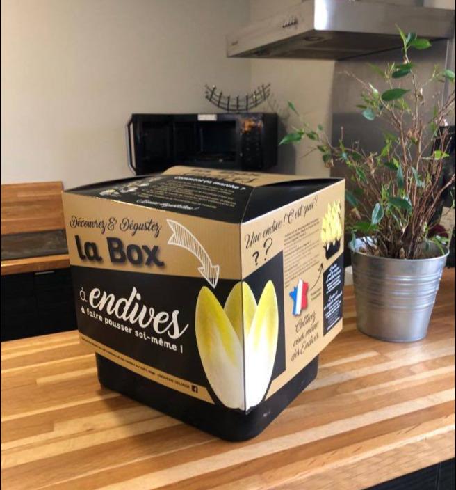 box à endives packaging